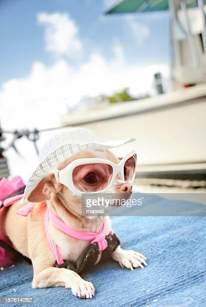 at yacht