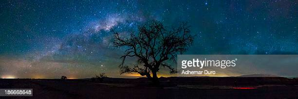 Atacama desert night sky