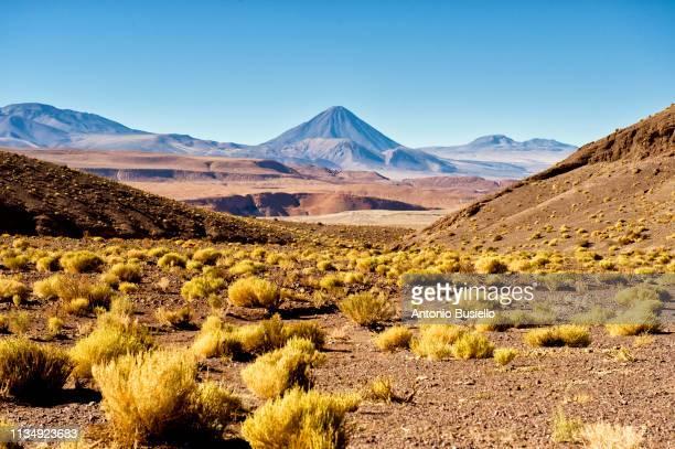 atacama desert - el teide national park stock pictures, royalty-free photos & images