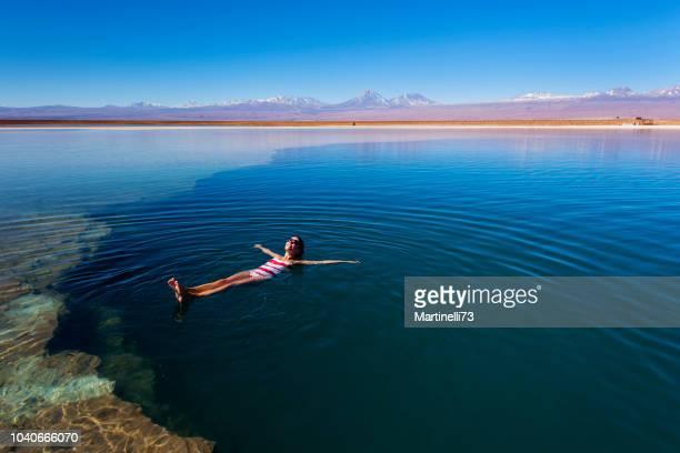 atacama desert - salt lagoon - volcanic landescape - oasis - wild life reserve - floating - antofagasta region stock photos and pictures