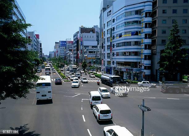 Atago kamisugi Street, Sendai, Miyagi, Japan