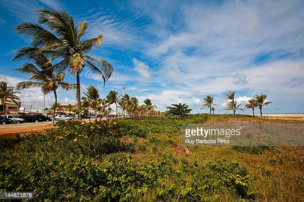atalaia beach - brasil sergipe aracaju - fotografias e filmes do acervo