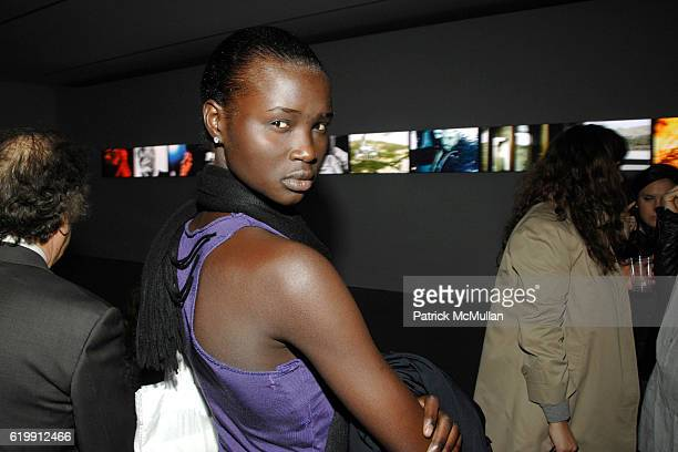 Ataui Deng attends A MILK GALLERY PROJECT Presents TRANSIT by ALEXI LUBOMIRSKI at Milk Gallery on October 21 2008 in New York City