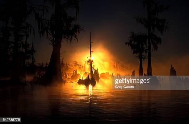Atchafayala Basin, Louisiana