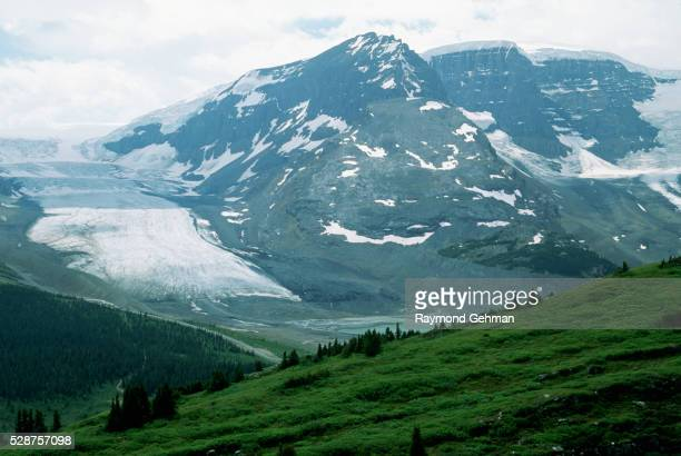 athabasca glacier in columbia icefield - columbia icefield stock pictures, royalty-free photos & images
