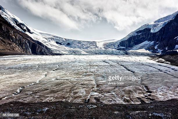 Athabasca Glacier off Icefields Parkway on summer afternoon, Alberta, Canada