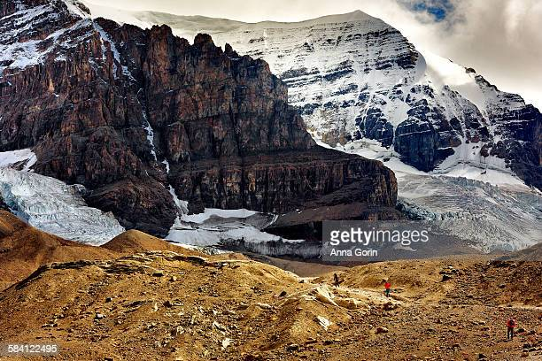 Athabasca glacier trail, summer, Icefields Parkway