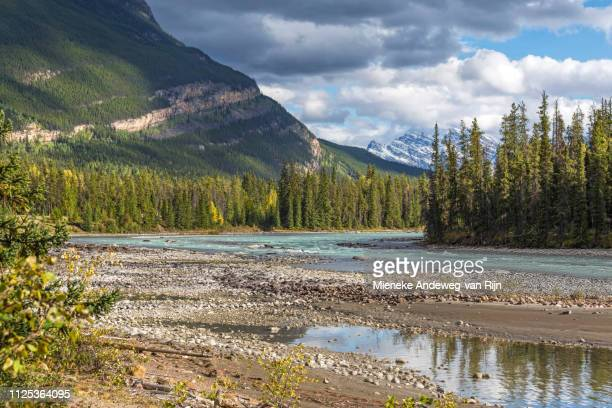 Athabasca river in Jasper National Park, Rocky Mountains, Alberta, Canada