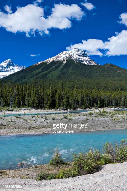 Athabasca River in the Canadian Rocky Mountains of Jasper National Park, Alberta, Canada