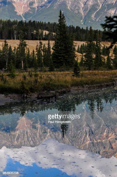 athabasca side stream mountain reflections - hoogeveen stock pictures, royalty-free photos & images