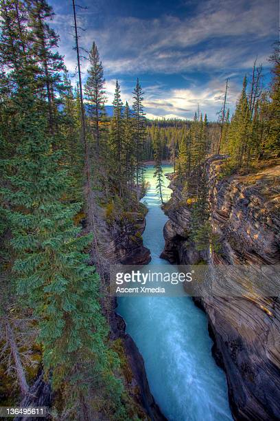 Athabaska Falls and canyon