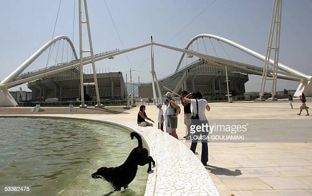 A dog jumps to a fountain in front of the olympic stadium in Athens to cool itself as temperatures rose to 39 degrees in the city 13 August 2005...