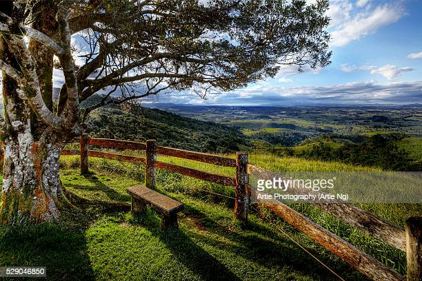 atherton tablelands, cairns highlands, far north queensland, australia - atherton tableland stock pictures, royalty-free photos & images
