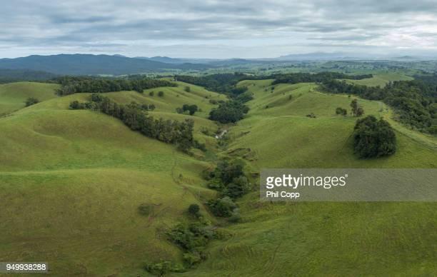 atherton tablelands - atherton tableland stock pictures, royalty-free photos & images