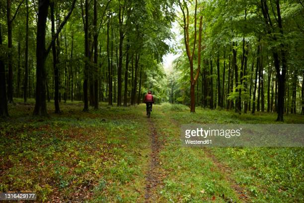 athlete cycling bicycle in forest - back stock pictures, royalty-free photos & images