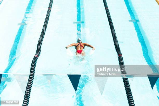 athlete swimming in olympic pool - the olympic games stock pictures, royalty-free photos & images