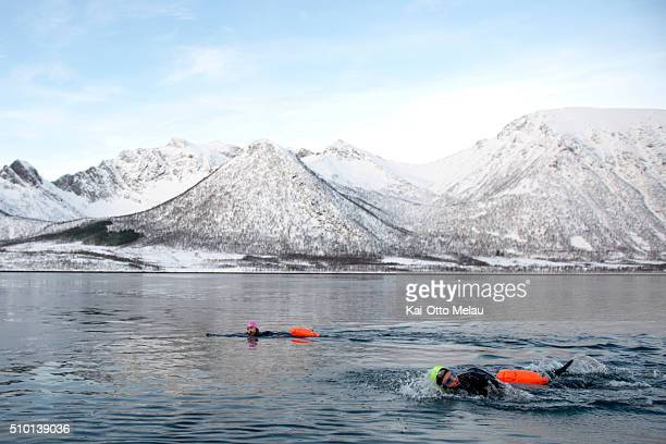 Athletes in the water on February 13 2016 in Svolvar Norway Athletes choose to swim in a drysuit due to the cold water in the fjord The water...