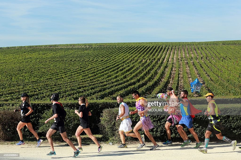 athletes run past vineyards near pauillac during the 30th marathon news photo getty images. Black Bedroom Furniture Sets. Home Design Ideas