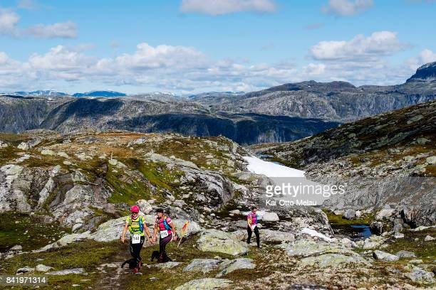 Athletes running over a mountainpass at Hardangervidda Marathon on September 2 2017 in Eidfjord Norway Hardangervidda Marathon goes through parts of...
