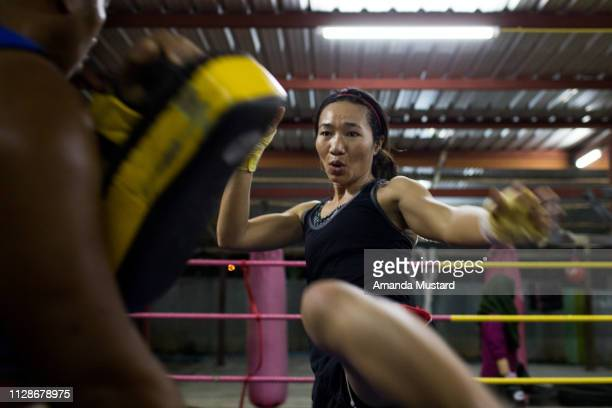 athletic akha/thai woman kicking in boxing ring - muay thai imagens e fotografias de stock