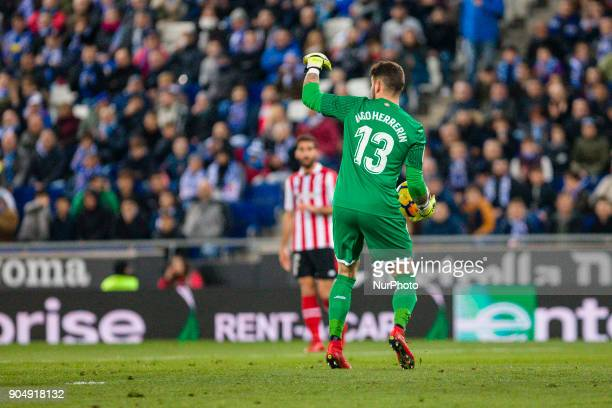 Athletic Club goalkeeper Iago Herrerin during the match between RCD Espanyol vs Athletic de Bilbao for the round 19 of the Liga Santander played at...