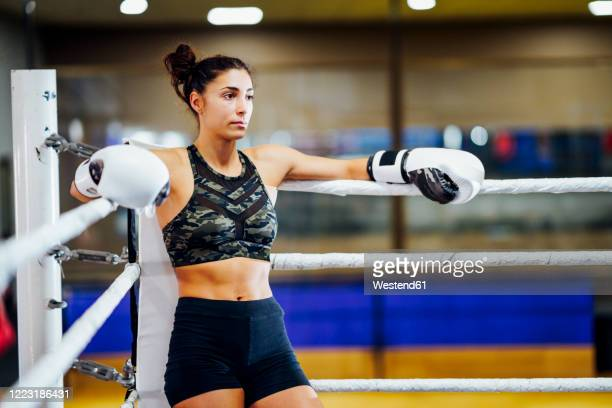 athletic female boxer in boxing ring leaning on rope in the corner - women's boxing stock pictures, royalty-free photos & images