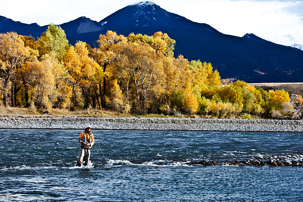 A Athletic Man Fly Fishing Stands In A River With The Fall Colors And Snowy Mountains Behind Him. Wall Art