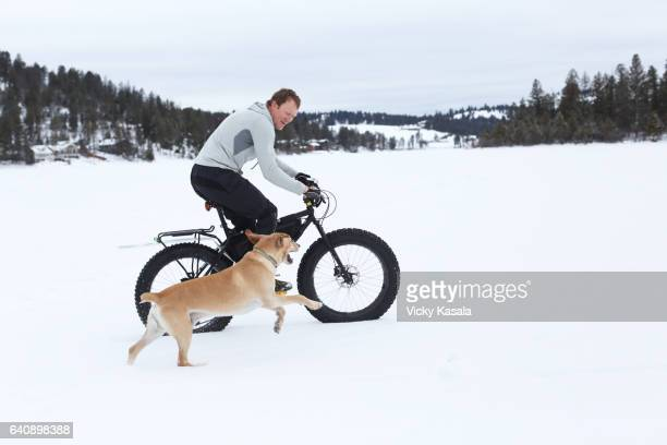 athletic man riding fat tire bicycle with his dog running beside him. - coonhound stock pictures, royalty-free photos & images