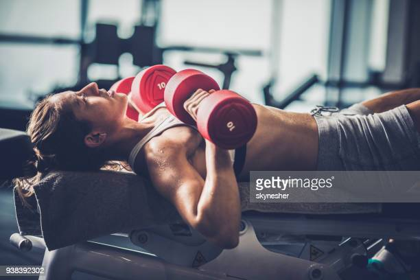 athletic woman having a weight training on a bench in a gym. - torace umano foto e immagini stock