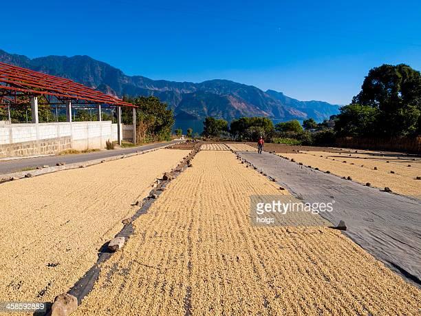 lago de atitlan, guatemala - guatemala stock-fotos und bilder