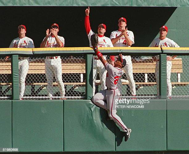 Atlanta Braves outfielder Andruw Jones can not get to a home run hit by St Louis Cardinals Ron Gant as his teammates in the bull pen celebrate 12...