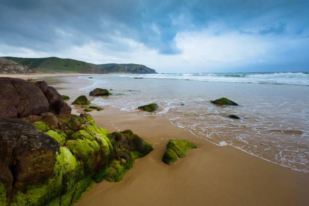 Atlantic Coast