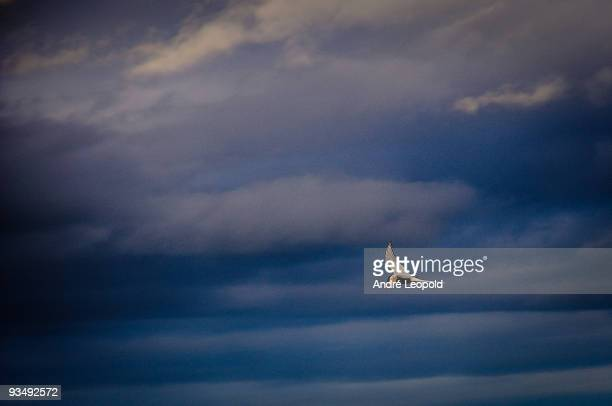 Atlantic Puffin flying