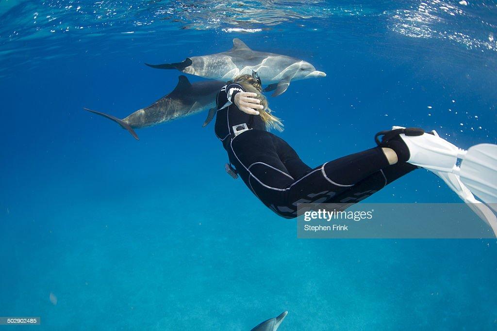 dolphin 2902