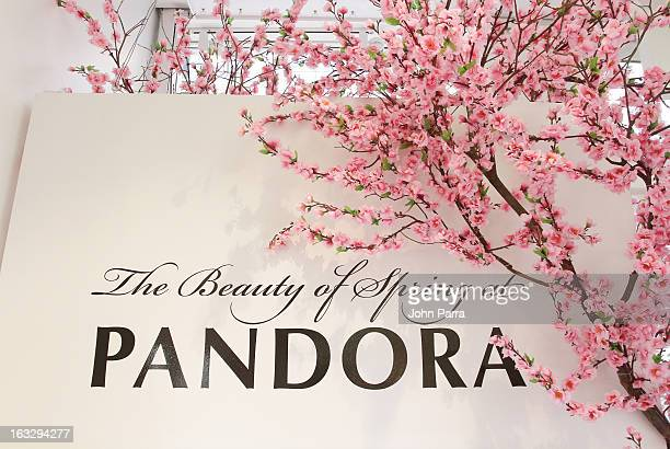 Atmosphere as PANDORA and Lucky celebrate the grand opening of PANDORA 494 Broadway on March 7 2013 in New York City