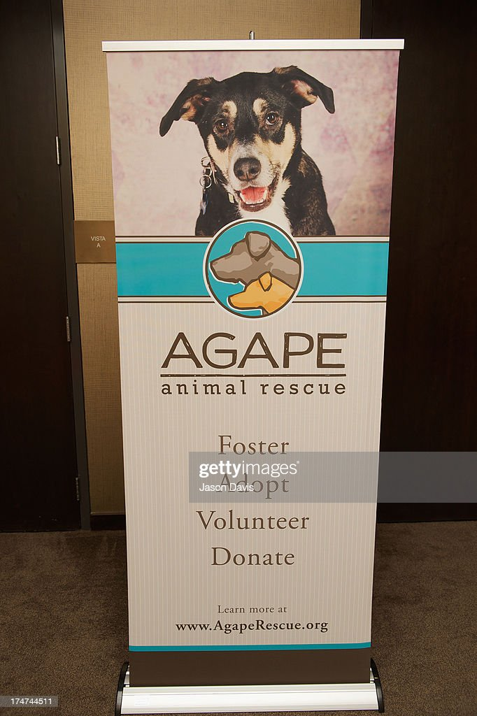 Atmosphere at the Agape Animal Rescue 5th Annual Glitter & Glam gala at the Hutton Hotel on July 28, 2013 in Nashville, Tennessee.