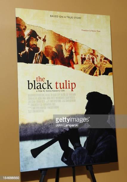 black tulip story