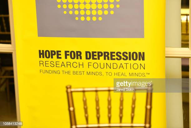 Hope For Depression Research Foundation Luncheon ...