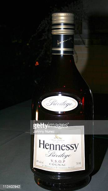 Atmosphere during Black Sport Agents Association presents the 2006 Achievement Awards and After Party Sponsored by Hennessy at Tribeca Penthouse in...
