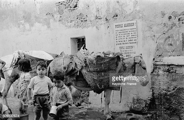 JULY 03 Atmosphere In The Casbah In The Days Following The Independence in Algiers Algeria on July 3 1962