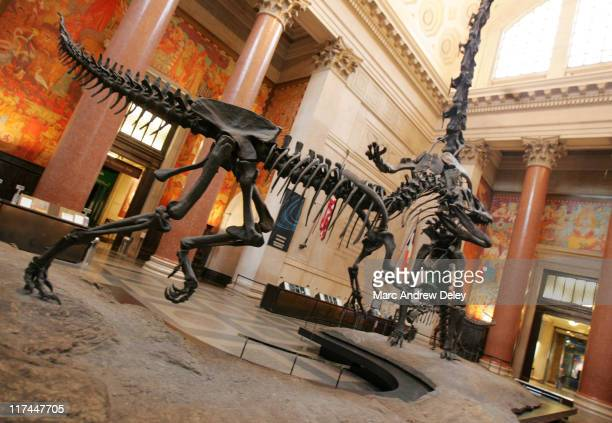 Atmosphere inside the American Museum of Natural History in New York prior to the sendoff celebration for the national T Rex Trek in conjunction with...