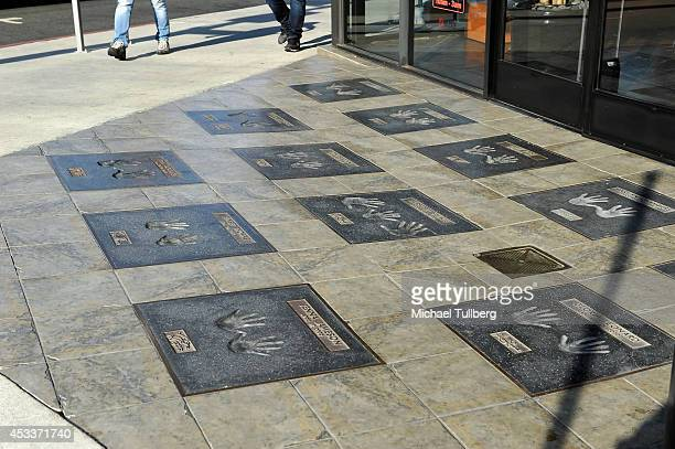 Atmosphere shot of the Adult Walk Of Fame at Hustler Hollywood on the 'Sunset Strip' on August 8 2014 in Hollywood California According to Bloomberg...