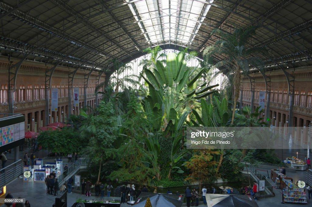 Atocha Train Station Madrid City Madrid Spain Stock Photo | Getty Images