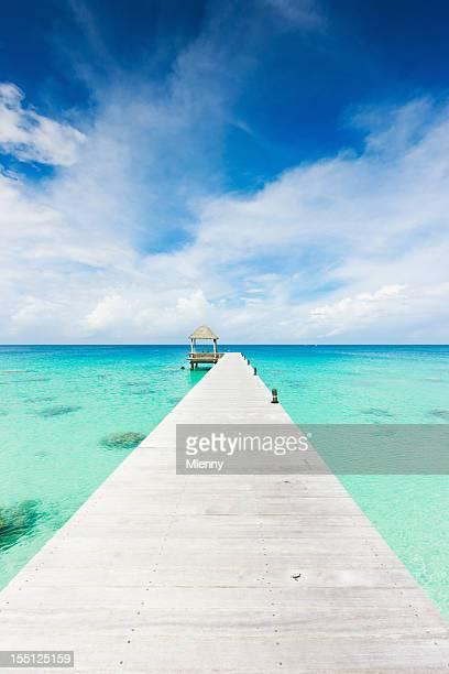 Atoll ponton eau claire Îles Tuamotu Fakarava Polynésie française