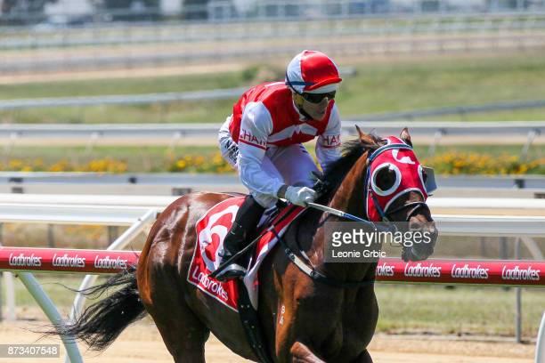 Atone ridden by Noel Callow wins the The Big Screen Company Plate at Mornington Racecourse on November 13 2017 in Mornington Australia