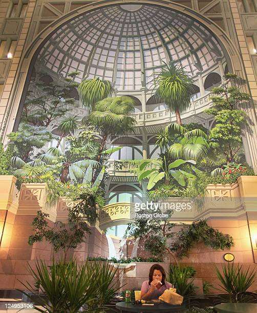 Atrium at 101 Merrimac Street in Boston has a fountain against a painted backdrop