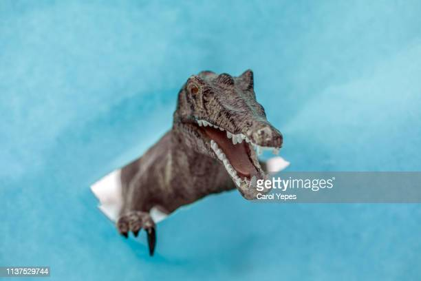 attack of the t- rex.broken wall - animation stock pictures, royalty-free photos & images