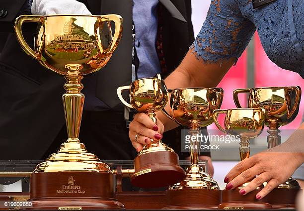 Attendants prepare the cups for the presentation of the 156th Melbourne Cup at Flemington Racecourse in Melbourne on November 1 2016 / AFP / Paul...