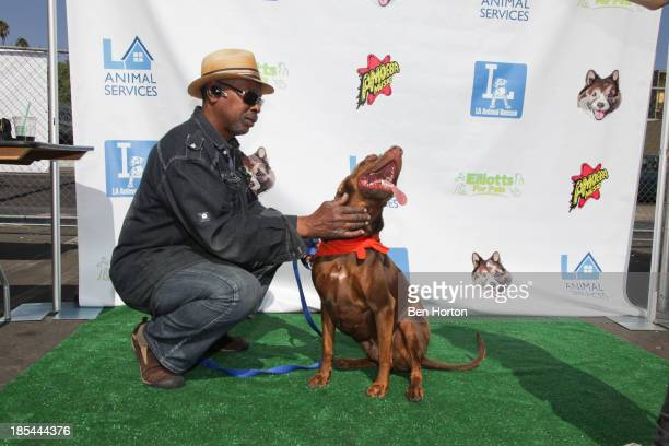 The Great Escape Pet Adoption Drive at Henry Fonda Theater on October 20 2013 in Hollywood California