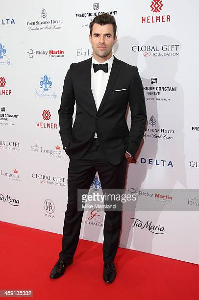 attends the Global Gift Gala at Four Seasons Hotel on November 17 2014 in London England